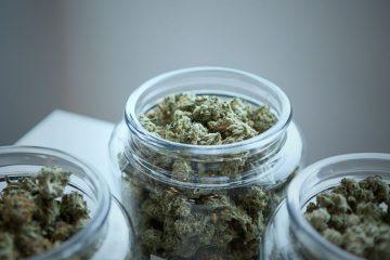 Vaporizar Cannabis
