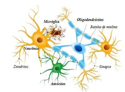 Células dos neurônios