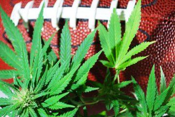 Cannabis nos esportes