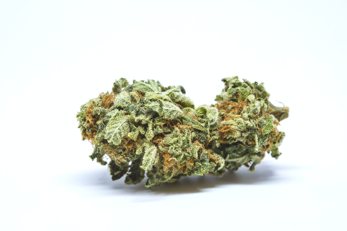 Moby Dick Cannabis