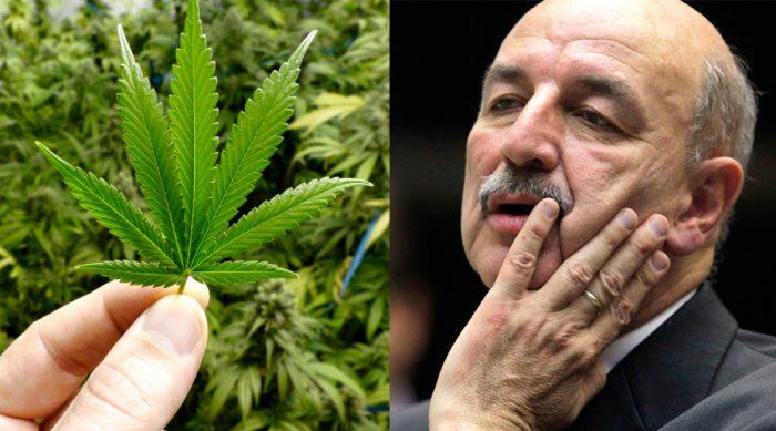 Politica de drogas no brasil
