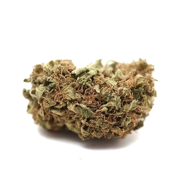 Colombian Gold Bud
