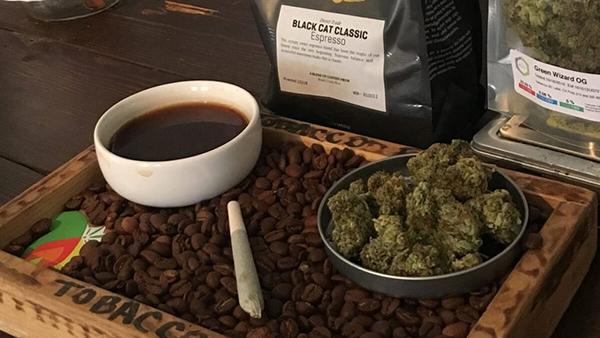 """Café pode ajudar a sair da """"badtrip"""" de maconha. Foto: CoffeShopSeeds"""