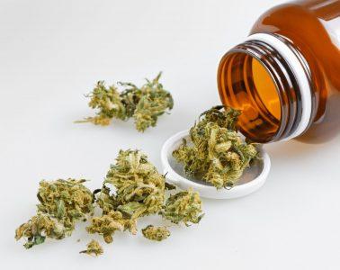 cannabis-contra-dores-cronicas