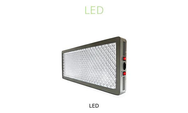 Lâmpada LED Cultivo Indoor