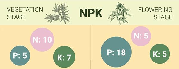 npk cannabis